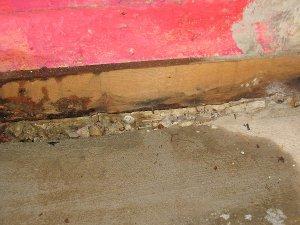 Basement Waterproofing Pasadena MD